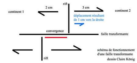 Schéma de fonctionnement d'une faille transformante avec les déplacements relatifs. © Claire König