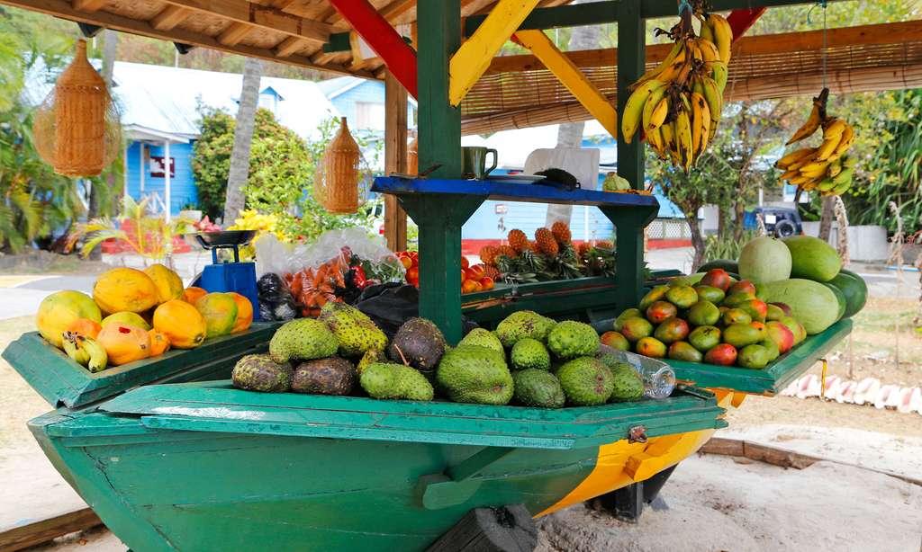 Moustique, l'île privée des Grenadines