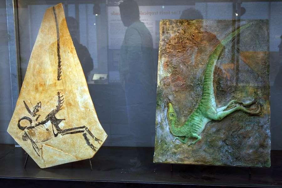 La sculpture en compagnie de son modèle du Jurassique. © Michel Fontaine
