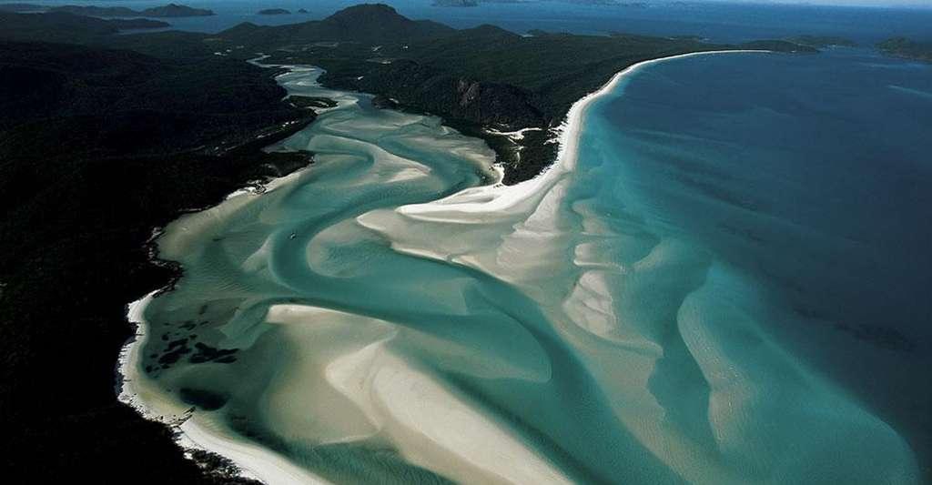 Plage de White Haven's à marée haute, Queensland, Whitsunday, Australie (20°15' S - 149°01' E). D'innombrables îlots coralliens et îles continentales parsèment l'étroit corridor qui sépare le Queensland, dans le nord-est de l'Australie, de la Grande Barrière de corail, située à quelque 30 km au large des côtes. Comme sur cette plage de Whitehaven, le littoral des îles se caractérise par l'exceptionnelle blancheur du sable, essentiellement composé de grains de quartz. © Yann Arthus-Bertrand - Tous droits réservés