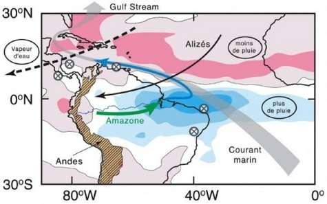 Simulation de l'anomalie moyenne des pluies après un effondrement de la circulation océanique profonde : augmentation en bleu, diminution en rouge (d'après Stouffer et al., 2006). La flèche en pointillés représente le transport actuel de la vapeur d'eau. Les flèches pleines indiquent les mouvements d'eau par les alizés (en gris), les fleuves (en vert) et les courants marins (en bleu). Les croix localisent les sites d'études paléoclimatiques. Crédit : CNRS