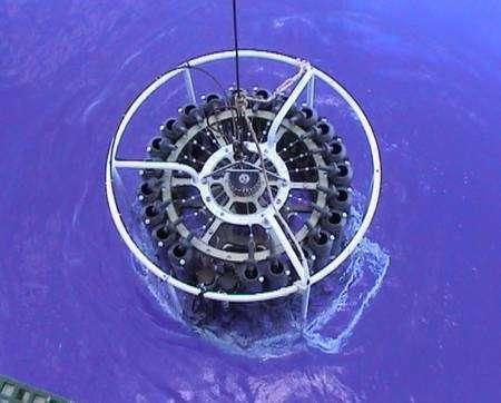 Figure 2. Les eaux océaniques quasiment violettes du tourbillon du Pacifique Sud. Crédit : LOV/OOV, Joséphine Ras