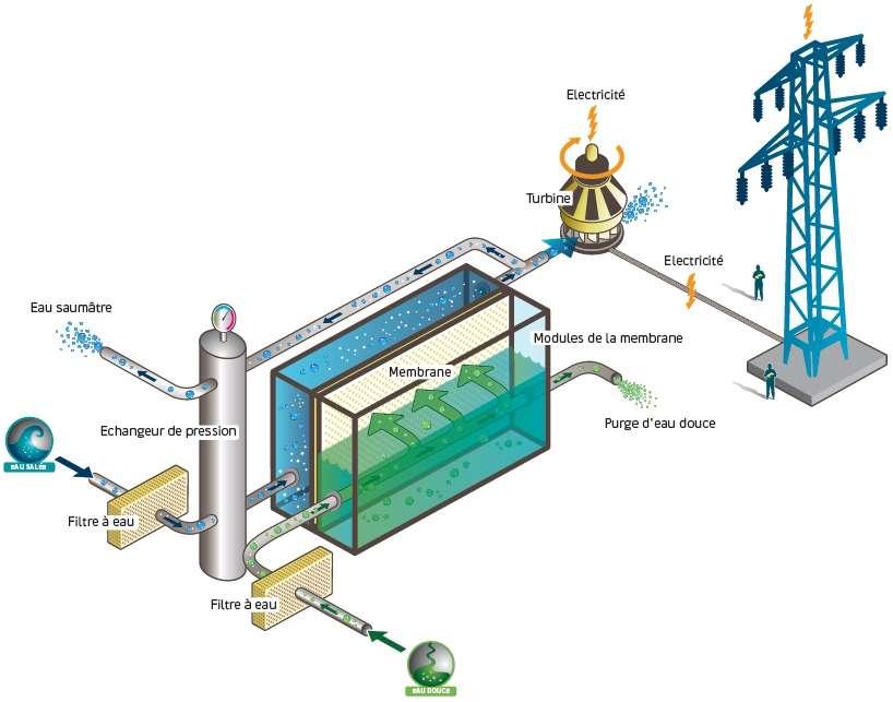 Schéma de fonctionnement d'une centrale électrique osmotique. L'eau saumâtre, donc salée (en bleu), passe dans un compartiment séparé par une membrane semi-poreuse d'un compartiment alimenté en eau douce (en vert). Par osmose, l'eau passe à travers la membrane vers la masse d'eau la plus salée, pour la diluer. Le niveau baisse d'autant dans le compartiment d'eau douce et provoque une augmentation de pression dans l'autre. Celle-ci est alors exploitée pour faire tourner une turbine productrice d'électricité. © Statkraft