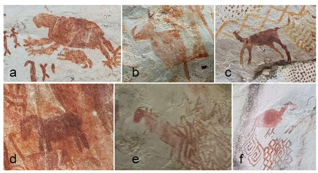 En a. un paresseux géant, en b. un mastodonte, en c. un camélidé, en d. et en e. des chevaux, en f. peut-être un macrauchéniides. © Gaspar Morcote-Rios et al. Quarternary International