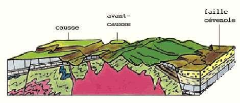 Les Causses et les Cévennes, dans le massif central, ont subi une érosion karstique. Sur ce schéma, on peut distinguer : le granite carbonifère datant de 285 Ma (en rose), les schistes et micaschistes des Cévennes (en vert pâle), les roches marines du Jurassique (en bleu clair quadrillé) et l'oligocène (en jaune). © J.-C. Bousquet 1996, DR