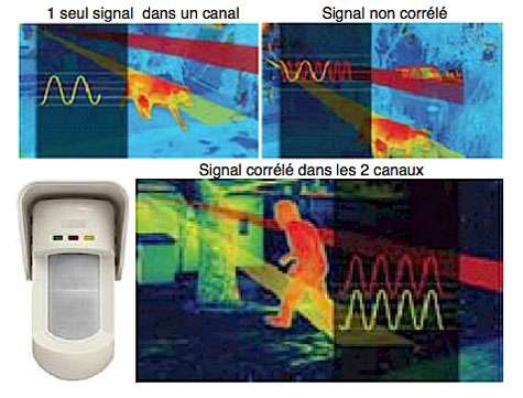 Détecteur bivolumétrique à reconnaissance sélective par 4 capteurs : 2 canaux infrarouges passifs + 2 canaux hyperfréquence. L'alarme ne se déclenche que si les deux canaux détectent simultanément un seul et même signal, évitant ainsi les alertes intempestives. Laisse passer des animaux de taille inférieure à 70 cm, possède une détection « antimasque » et une sortie d'information « lentille sale ». Couverture : 15 m sur 90° en volumétrique, 15 m sur 5° en détection rideau, 23 m sur 5° en longue portée. Prix indicatif : 293 €. DEXT-B12 © Lextronic
