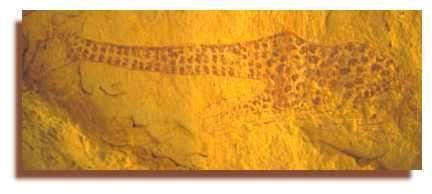 Girafe couchée - In Djaren (Tadrat). Un chef d'oeuvre compte tenu des moyens rudimentaires de l'époque.