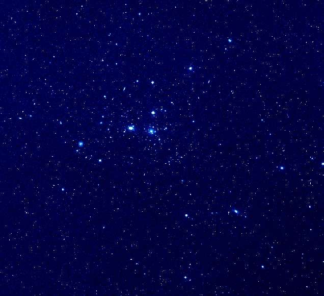 L'amas de galaxies de Coma. © Digitized Sky Survey