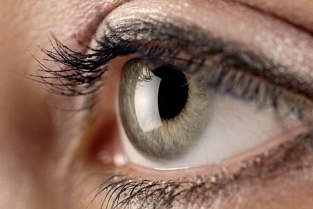 L'œil myope voit flous les objets éloignés. © Kyle May, Flickr, cc by 2.0