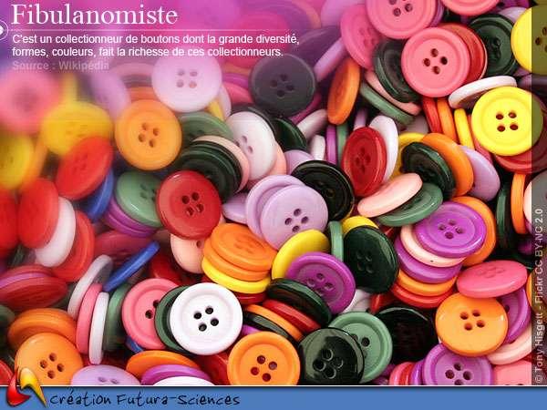 Fibulanomiste - boutons
