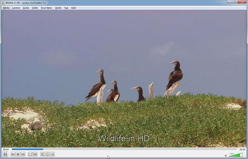 VLC media player peut lire tous les formats vidéo et audio sans téléchargement de codecs supplémentaires. VideoLAN, VLC, VLC media player and x264 are trademarks internationally registered by the VideoLAN non-profit organization.
