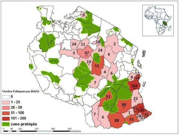Nombre d'attaques enregistrées entre 1988 et 2009 dans chaque district de Tanzanie (la capitale Dodoma se trouve au centre du pays). © Packer et al., 2011/traduction Futura-Sciences