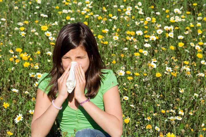 Éternuements, nez qui coule, démangeaisons au niveau des narines sont les symptômes de l'allergie aux pollens. © godfer, Fotolia