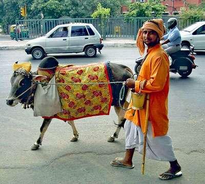 Scène de la vie quotidienne à Delhi. Les quartiers dévolus aux activités numériques côtoient les commerces traditionnels. © John Hill, GNU 1.2