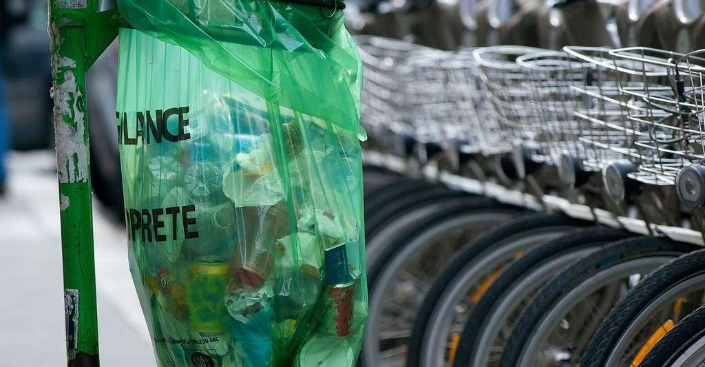Un sac poubelle publique à Paris. © Daniel Stockman, CC BY-SA 2.0