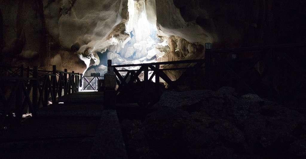 Découverte dans les profondeurs des grottes de Bornéo. © Thomas Quine, CC by 2.0