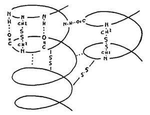 Molécules.