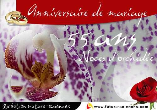 Noces d'orchidée : 55 ans