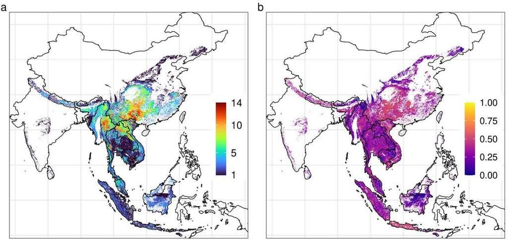 Carte : a) Nombre d'espèces de chauves-souris avec des virus de type SARS-CoV en Asie du Sud-Est. b) Risque de transmission (nombre d'espèces rapportées à la population humaine). © Peter Daszak et al., MedXriv, 2021
