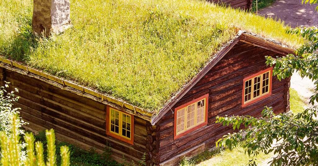 Les maisons semi-enterrées profitent de l'inertie du sol, été comme hiver. © Shutterstock, Nanisimova
