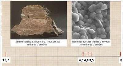 Traces de vie retrouvées datant de 3,8 et 3,5 milliards d'années. © DR