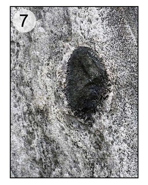 En 7, gneiss, morceau de roche basique. © Claire König, DR