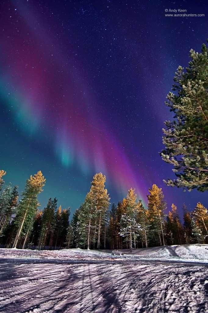 Image réalisée le 22 janvier par Andy Keen depuis le nord de la Finlande. © Aurorahunters.com