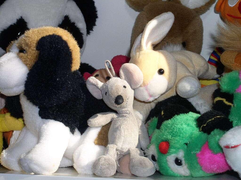 Les tout-petits s'attendent à voir des organes à l'intérieur des êtres vivants, mais pas à l'intérieur de leurs jouets. © Husky, Wikipédia, cc by sa 3.0