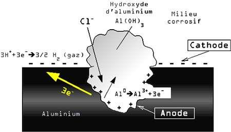 Schéma piqûre © Wikipedia