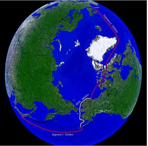 Le tracé du projet de fibre optique Artic Link va serpenter sur près de 16.000 kilomètres en traversant l'océan Arctique à 600 mètres de profondeur. L'itinéraire par le détroit de Bering raccourcit la longueur du trajet entre l'Europe et l'Asie, évitant de passer par la Méditerranée, la mer Rouge et l'océan Indien. © Artic Link Cable Company