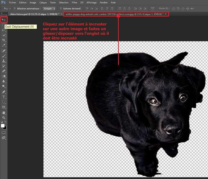 Déplacez l'objet détouré vers l'onglet d'une autre image avec un glisser/déposer. © Adobe