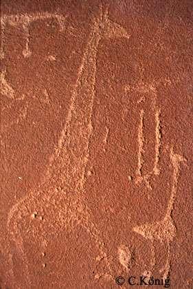 Photo du magnifique grès rose porteur de pétroglyphes en Namibie