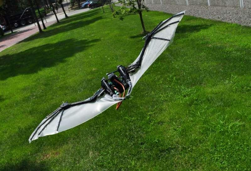 Le drone chauve-souris s'envole. Clément Ader, et son Éole inspiré des chiroptères, aurait aimé. Batman aussi, sans doute. © J. Colorado, A. Barrientos, C. Rossi, K. Breuer