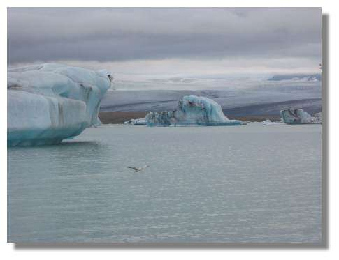 Iceberg - Islande Copyright Photo Daniel Brindeau
