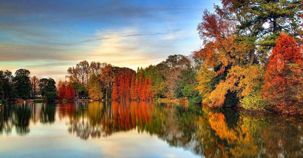 Le temps de l'automne et ses couleurs si particulières, ici sur le lac Clara Meer, au parc Piedmont d'Atlanta, en Géorgie. © Frank Kehren, CC by-nc 2.0