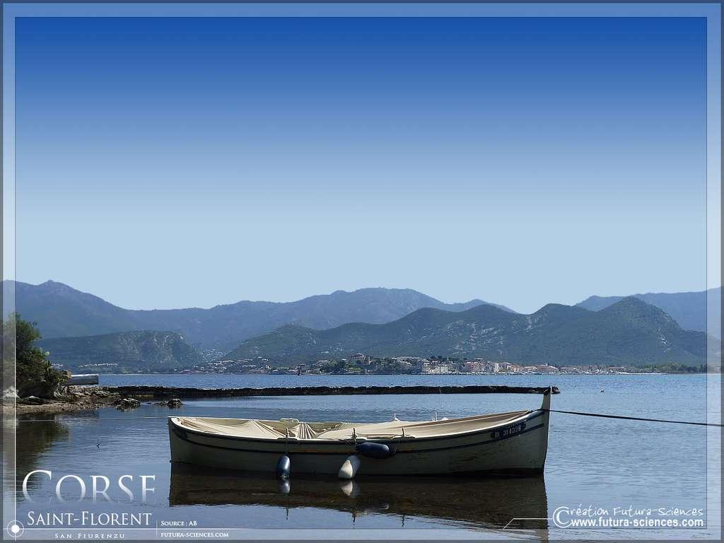 Corse, barque de pêche