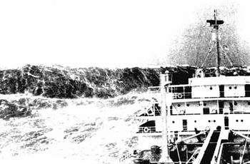 Les marins les avaient décrites et même parfois photographiées. Mais les scientifiques ont mis longtemps à les croire...