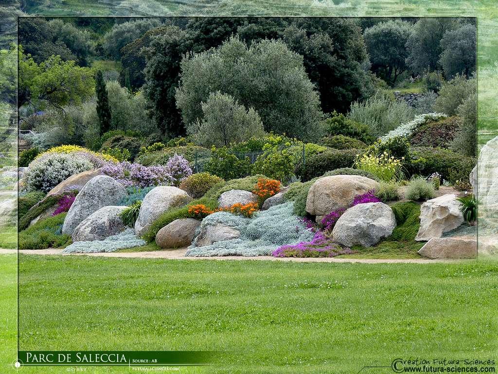 Corse parc de Saleccia