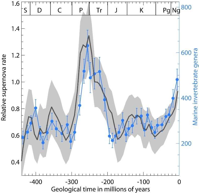 En bleu, le nombre de genres d'invertébrés marins sur Terre pendant les périodes géologiques comme le Permien (P), le Trias (Tr) et le Crétacé (K). En noir le taux de supernovae dans l'environnement proche du Soleil au cours de son périple galactique. La corrélation semble forte. © H. Svensmark/DTU Space