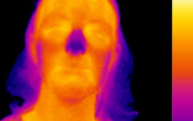 Cette image thermique reflète la température de la peau au niveau du visage d'une des participantes. Les yeux et la bouche sont les régions les plus chaudes (en orange), tandis que les cheveux et l'extrémité du nez sont des zones plus froides (en violet). © Perception Lab, université de Saint-Andrews