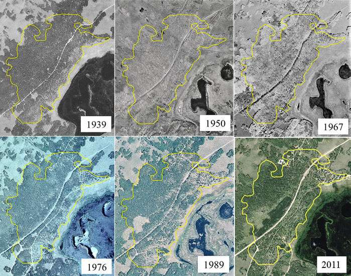 En analysant des photographies aériennes prises durant 72 ans, entre 1939 et 2011, les scientifiques de l'université d'État de l'Utah ont constaté un déclin inquiétant de Pando. © USDA Aerial Photography Field Office, Salt Lake City, Utah