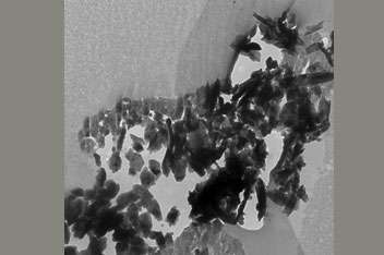Figure 2.a. La particule Inti observée au microscope électronique (grossie 5.000 fois). Crédit : University of Chicago