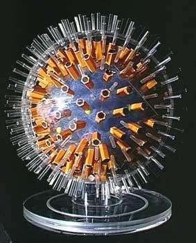 Maquette du virus de l'herpès - copyright M. Depardieu