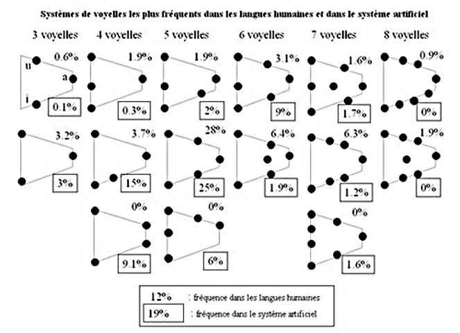 Comparaison entre la distribution des systèmes de voyelles apparaissant dans le système artificiel et dans les langues humaines (d'après la base de données UPSID). © UPSID, Maddieson, 1984
