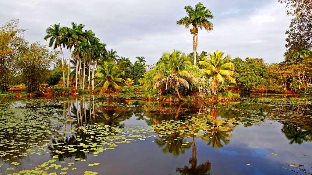 Guama et la laguna del Tesoro