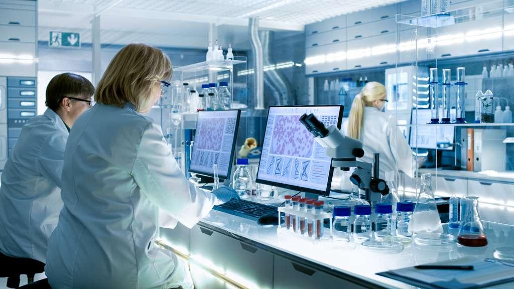 Algorithme par algorithme, les méthodes in silico se font une place dans la recherche française. © Gorodenkoff, Adobe Stock