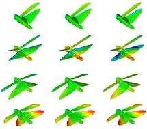 Les images du criquet en train de voler, avec des marques sur le corps, ont permis de réaliser un modèle 3D du vol battu montant les déformations continuelles des quatre ailes. On voit ici quelques phases, issues d'une vidéo créée par l'équipe scientifique. © Adrian Thomas et al.