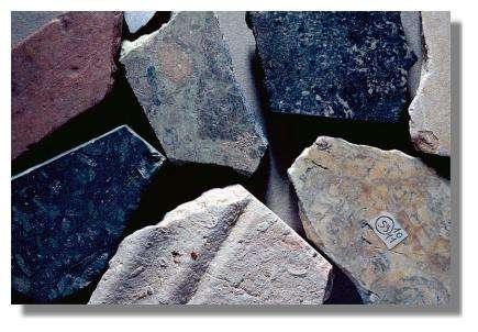 Sanctuaire gallo-romain de Villards-d'Héria : fragments de pierres et de marbres. Musée d'Archéologie, Lons-le-Saunier- Photo : Inv. J. Mongreville - © Inventaire général, ADAGP, 1998