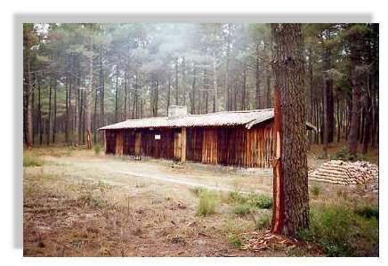 L'habitat des résiniers - Les cabanes de bois ou de pierre dans lesquelles vivaient les résiniers étaient très souvent situées au coeur de la forêt. Il était pas rare que plusieurs familles de gemmeurs y cohabitent. © Claude Courau - Collection privée - Tous droits réservés