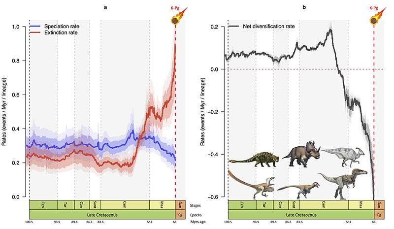 Quelque 10 millions d'années avant la chute de la météorite qui a provoqué l'extinction des dinosaures, le taux d'apparition de nouvelles espèces (courbe bleue) a diminué et celui des extinctions (courbe rouge) a fortement augmenté. De quoi mener à une diminution rapide du nombre d'espèces de dinosaures (courbe noire) au cours de cette période. © Fabien Condamine, Isem, CNRS